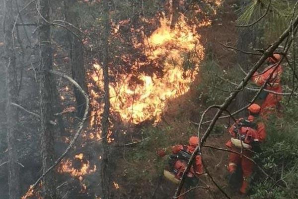 云南大理鹤庆县发生森林火灾 正在紧急扑救