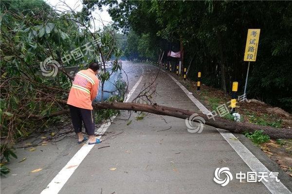广东强对流天气持续 多地将有大到暴雨