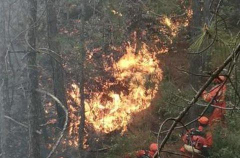 云南鹤庆森林火情已得到初步控制