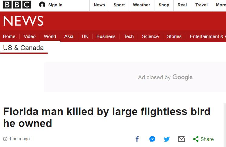 鸟大了也能杀人!美国一男子遭家养食火鸡攻击