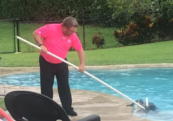 美国一民宅泳池惊现2.7米长短吻鳄吓坏屋主