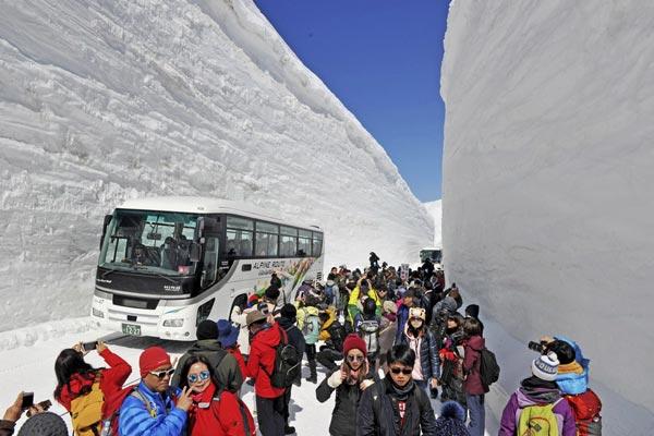 """日本""""雪墙公路""""对公众开放 两侧积雪高达16米"""