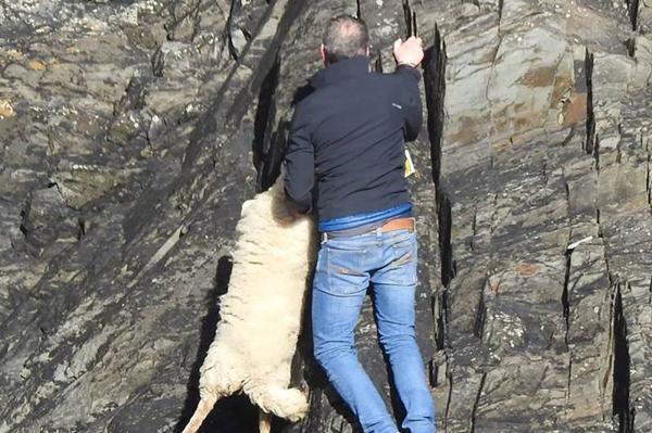 英男子悬崖涉险救山羊 海岸警卫队表示不值得