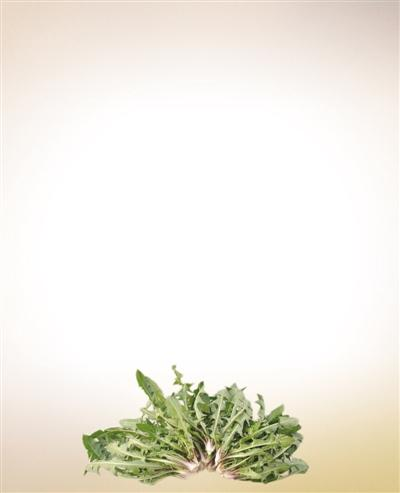 辟谣!野菜真的更安全、更绿色,还抗癌?