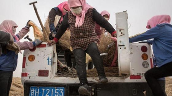 外媒:互联网+慈善 中国慈善新模式受关注