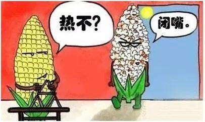 热热热!云南连发高温预警,未来三天多地最高温度或至40℃!