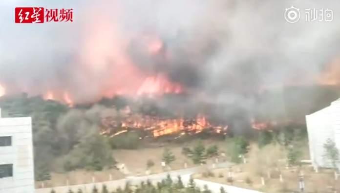 沈阳棋盘山山火仍在扑救 因当地村民耕地内焚烧秸秆引发