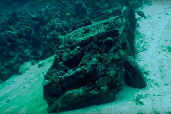 沉入海底40余年 昔日好车变鱼类家园