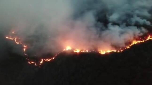 昆明市龙池山发生森林火灾 消防支队已赶赴现场