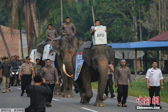 印尼选委会:或需35天才能公布正式选举结果