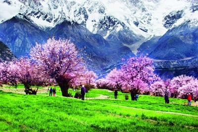 西藏浙江如何激活绿水青山