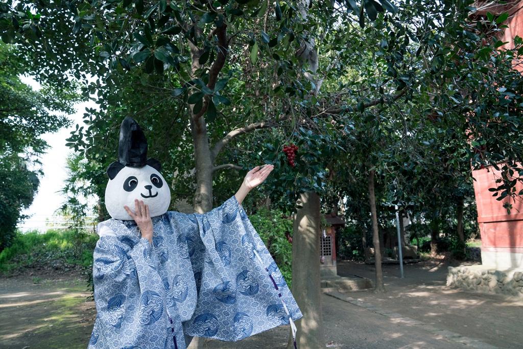 """蹭滚滚热度?日本有鹿神社大神官扮成""""熊猫""""吸引游客"""