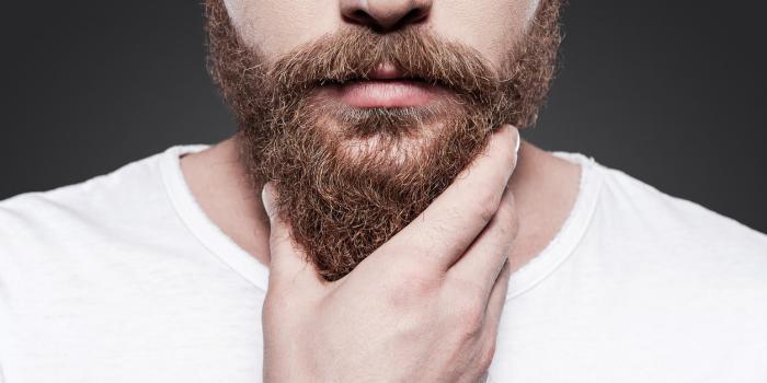 大胡子男人很帅? 专家称胡须内细菌量比狗身上还多