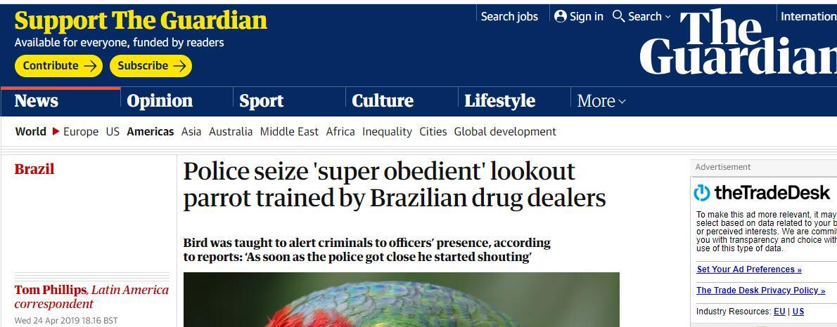 巴西警察缉毒,逮捕毒贩和一只鹦鹉
