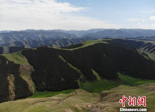 """甘肃祁连山保护区""""休养生息"""":多动物种群 少人为扰动"""