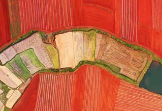 航拍阡陌纵横的红土地