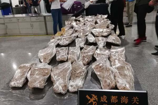 成都海关截获价值千万元的石首鱼鱼鳔