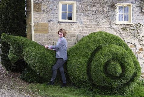 叹为观止!园艺高手将自家篱笆修剪成漂亮雕塑
