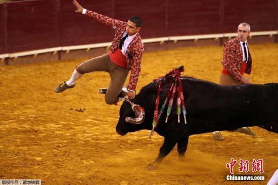 西班牙大选拉开帷幕 反斗牛党料首度晋身国会