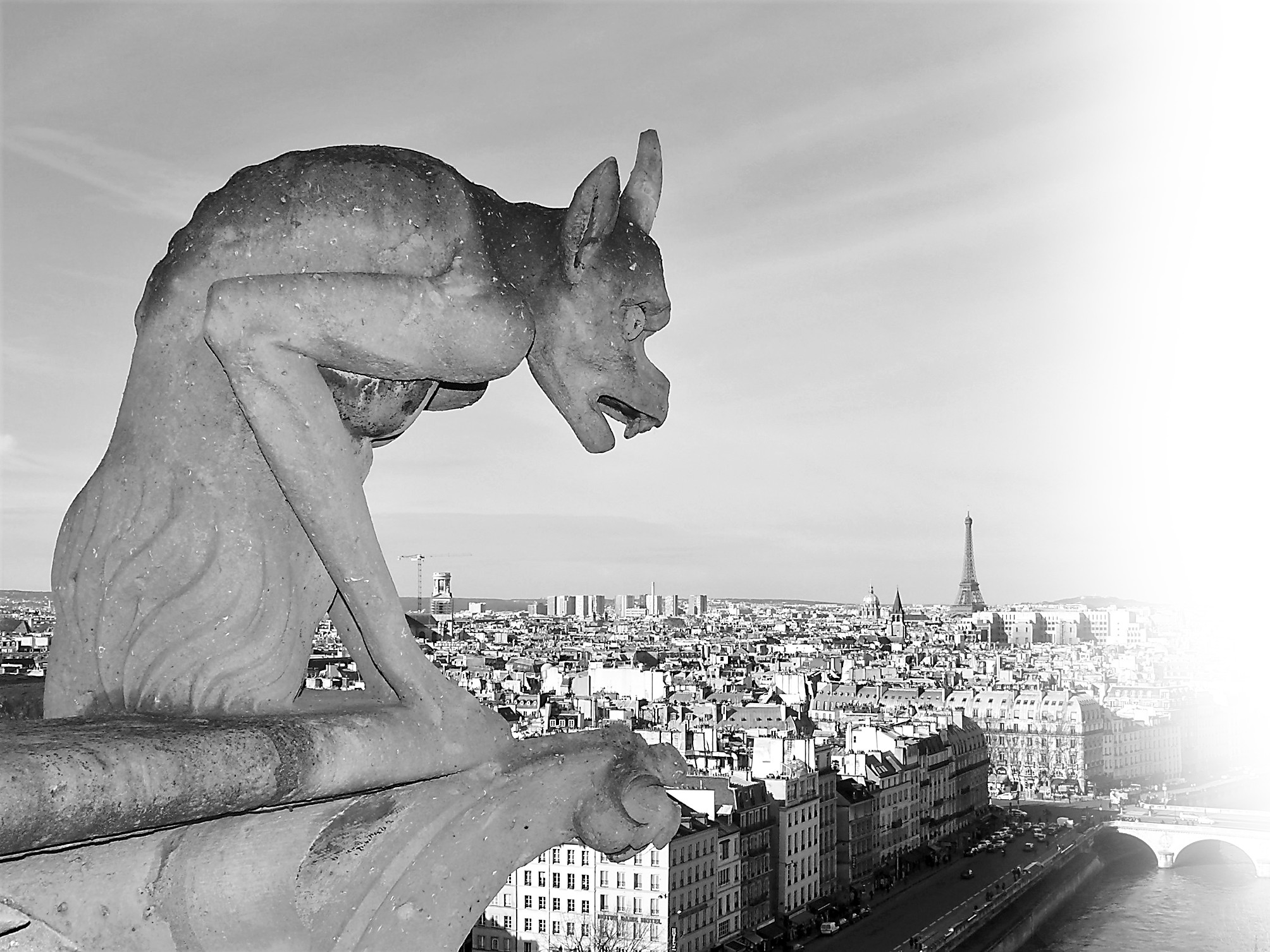 钟楼怪兽,巴黎圣母院的魔幻世界