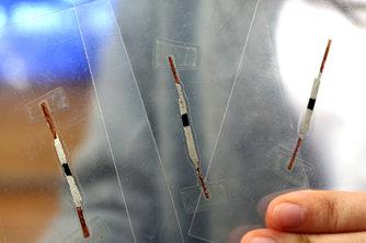大学生研发肿瘤标志物纸基传感器