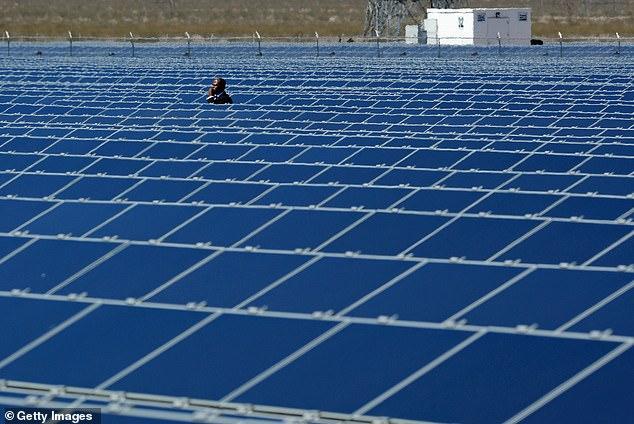 美国可再生能源使用量将首次超过煤炭产量