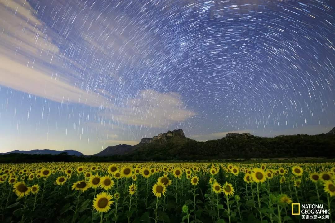 真正的追星人 就该在丝绸之路上追