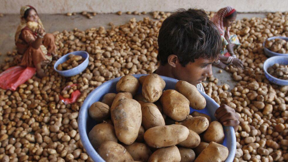 想庭外和解吗? 百事可乐指控印度马铃薯种植者:我们不会向巨人屈服