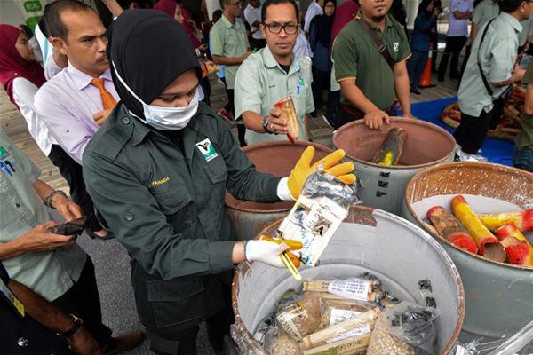 马来西亚销毁近四吨走私象牙