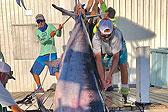 佛罗里达一渔民耗时8小时捕获343公斤剑鱼