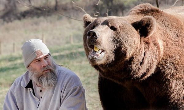 美国一养熊人讲述养熊经历 称它们不是宠物