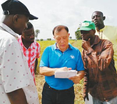 超级稻既稳产又保护环境 助力粮食安全和减贫