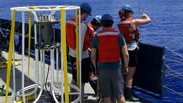 """科学家在太平洋水域发现奇特的""""砷呼吸""""微生物"""