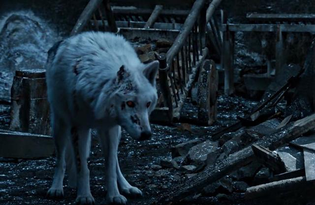 《权力的游戏》S8E4:赶走冰原狼再射死一条龙,剧组是缺钱了吗?