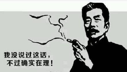 """因网友集中访问 """"鲁迅说过的话""""检索系统崩溃了"""