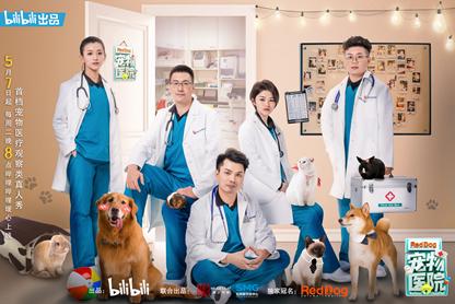 沉浸式深入宠物医疗行业 《宠物医院》的探索之里