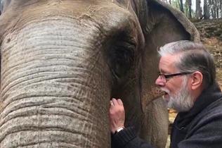难忘养育恩!大象32年后与饲养员重逢 亲热拥抱