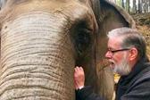 难忘养育恩!大象时隔32年与饲养员重逢亲热拥抱
