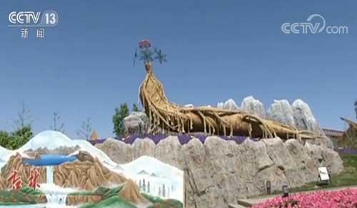 魅力世园会:美丽景观引游客 绿色产业富农民