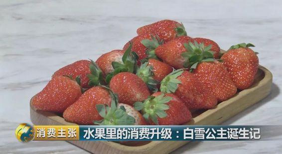 什么?一颗草莓卖到8块钱!凭啥?