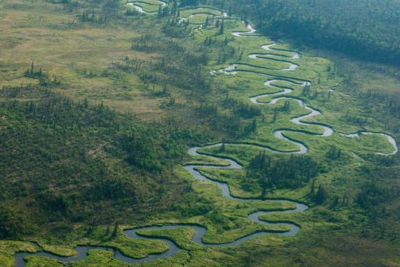 调查发现全球仅有1/3较长河流还能自由流动