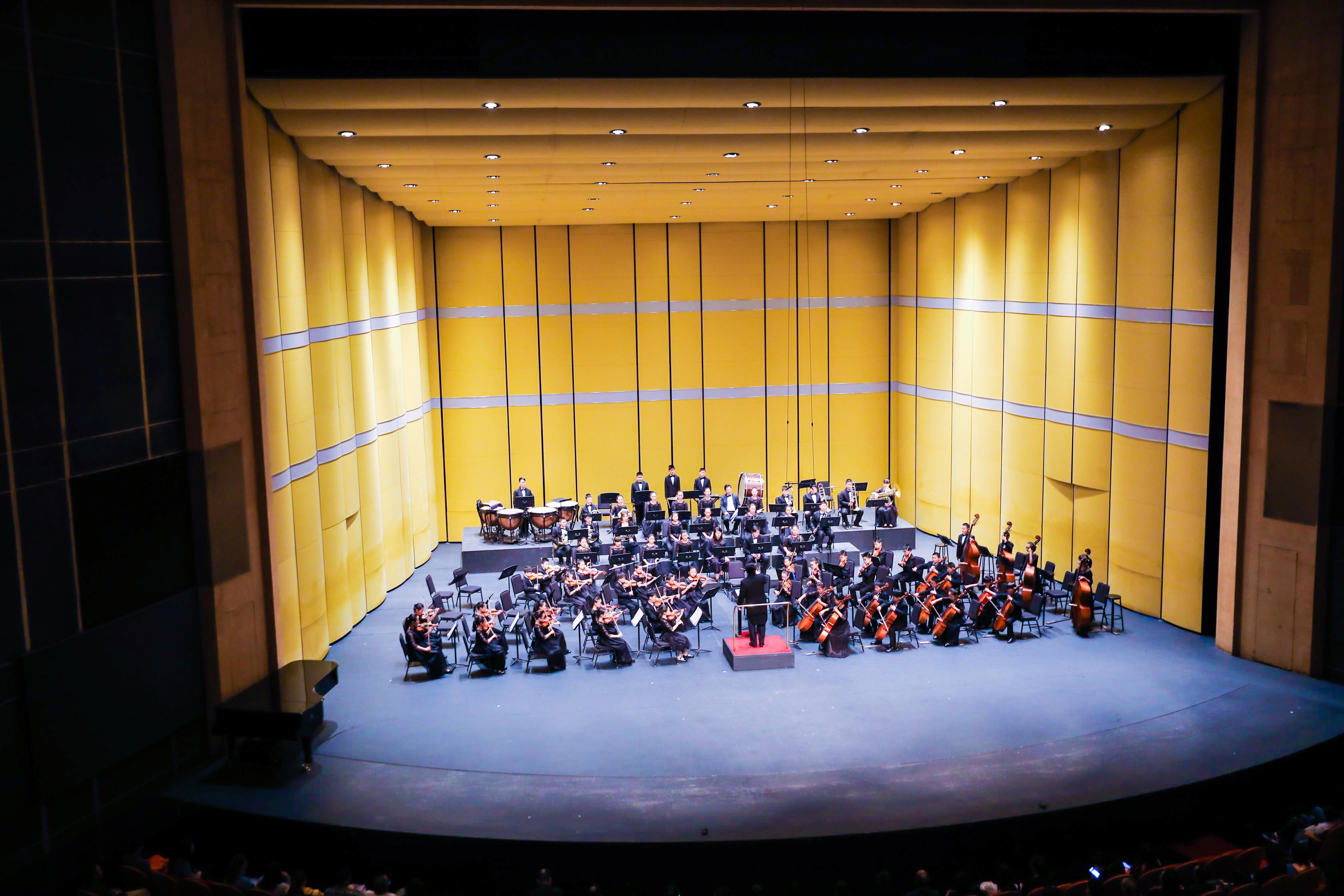 """""""田埂上的欢乐颂"""" 2019荷风公益音乐会于上海举行"""