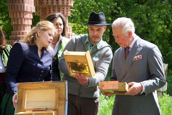 查尔斯王子访德参观有机农场 品尝啤酒美食对养蜂好奇不已