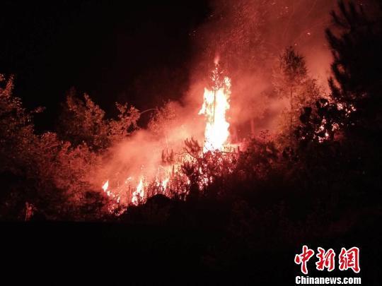 云南大理永平山火因焚烧竹叶引起 肇事者投案自首