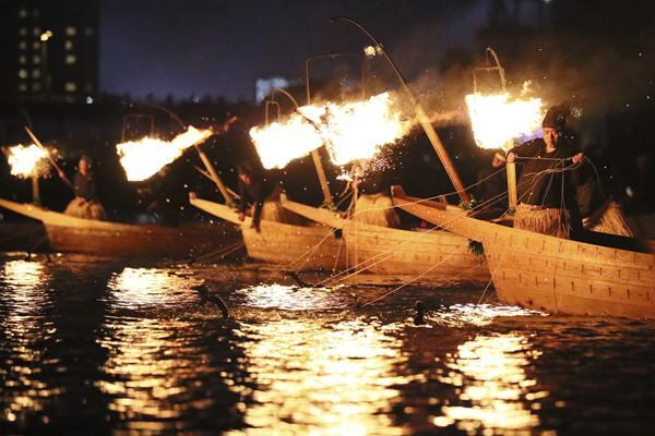 日本岐阜县启动今年首次鸬鹚捕鱼 熊熊篝火照亮黑夜