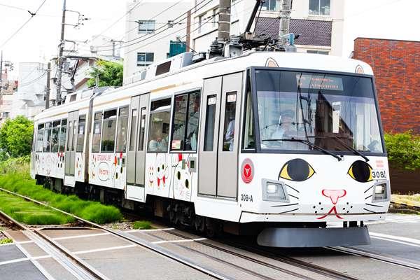 """萌哭!日本东京""""招财猫""""专线列车"""