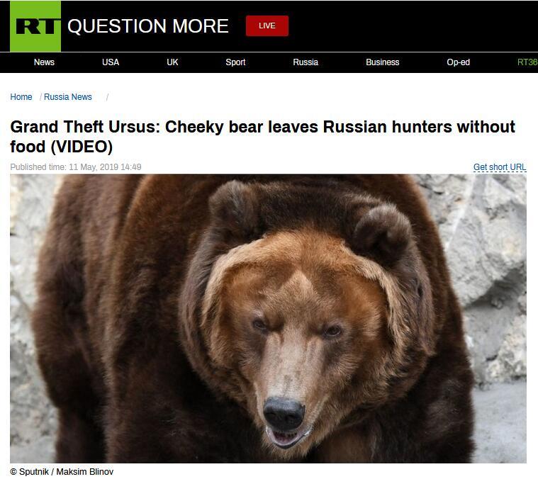 """哭笑不得!俄罗斯一棕熊""""抢劫犯""""洗劫猎人食物后逃跑"""