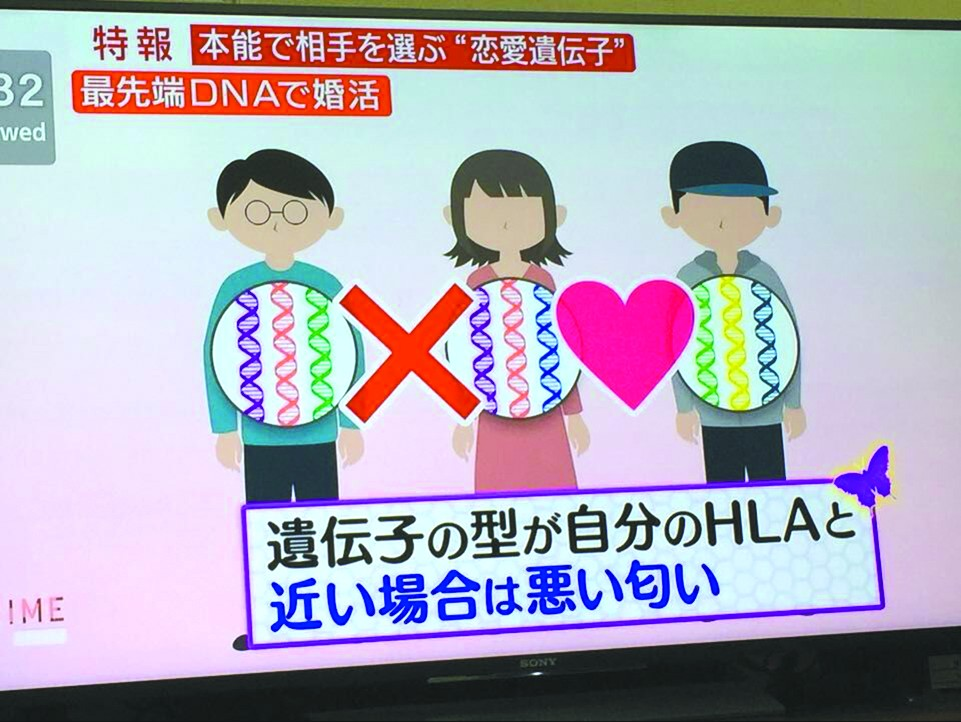 日本人通过DNA寻找另一半