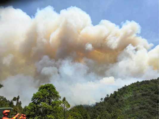云南安宁突发山火 过火面积超500亩