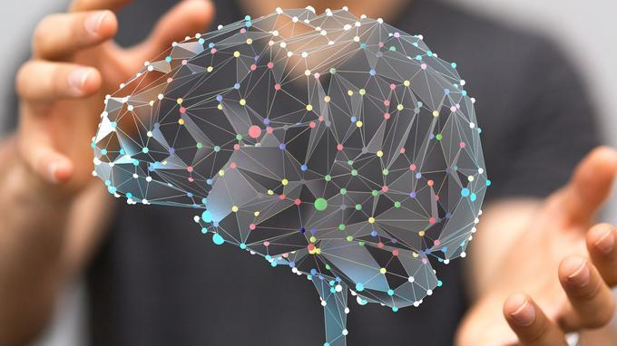 成年人思想未必成熟 英国研究称人脑到30岁才发育完全